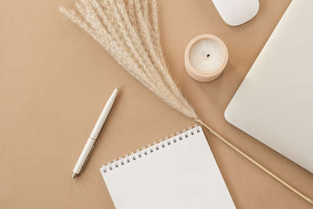 Minimal home office desk workspace on pastel beige background. Blank sheet notebook, laptop, pampas grass branch, decorations. Business, work template with copy space for blog, website, social media.