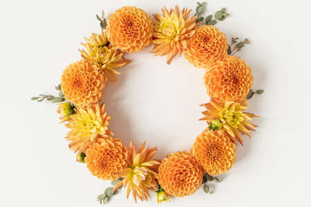 Round blank space mockup frame wreath made of beautiful orange dahlia flower buds and eucalyptus branches on white background. Flat lay, top view minimalistic still life creative floral composition. Stock fotó