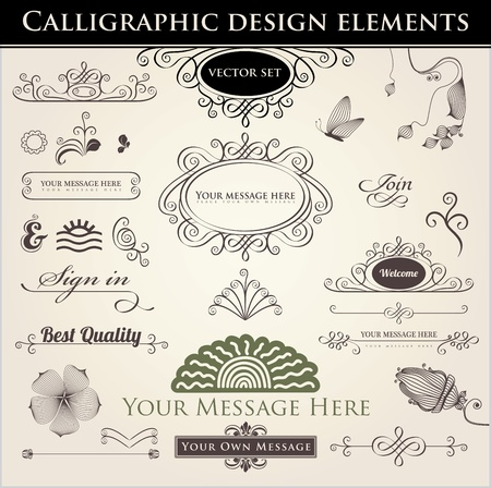 Vector set. Calligraphic design. Elements and page decoration. Illustration