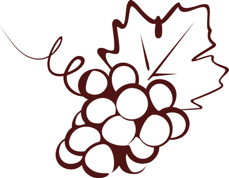 grape crop: grapes Illustration