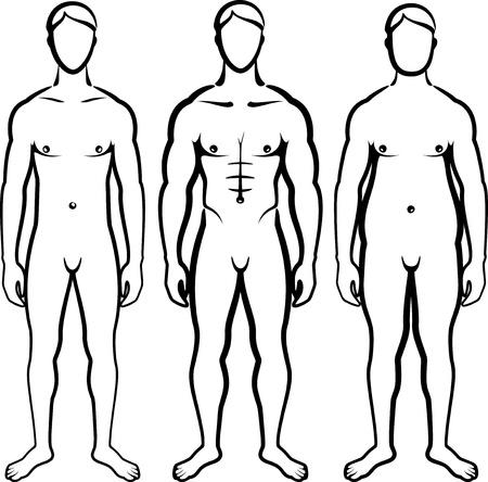 uomo nudo: set di tipi di corpi di uomini Vettoriali