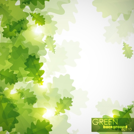 abstract shiny background with green oak leaves