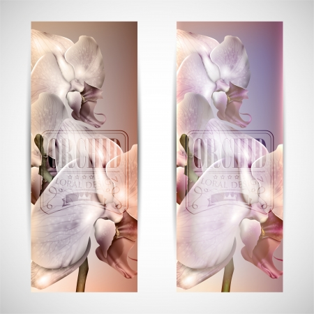 set of vintage cards with blossom orchid Vector