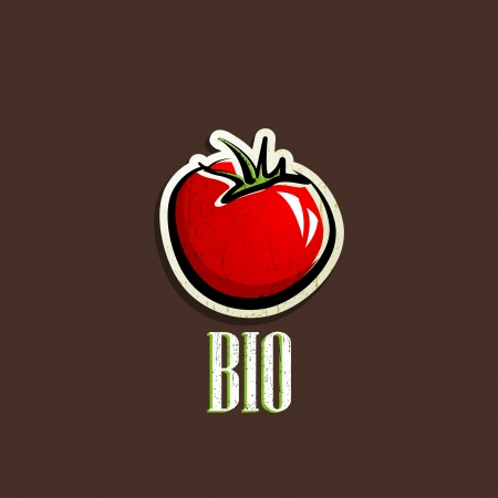 tomato: vintage illustration with a red tomato