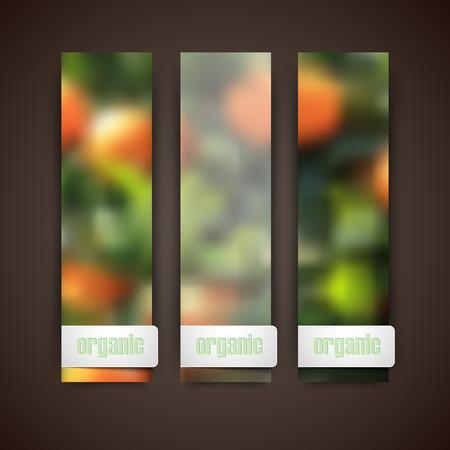 작은 숲: Set of banners with blurred background of orange grove, vector design