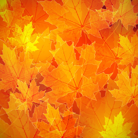 floral autumn (fall) background with maple leaves