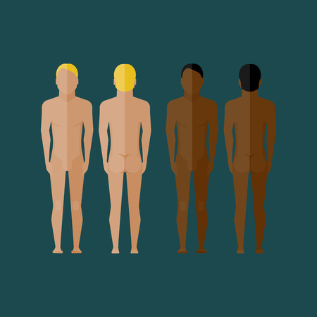 naked male body: illustration with naked men body (front and back view) in flat style Illustration
