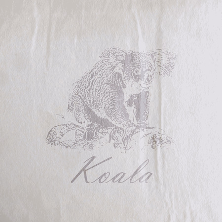 vector vintage illustration of a koala bear on the old wrinkled paper texture Vector