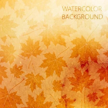 hojas parra: vector resumen de antecedentes de acuarela para su diseño. Patrón de otoño con hojas de arce