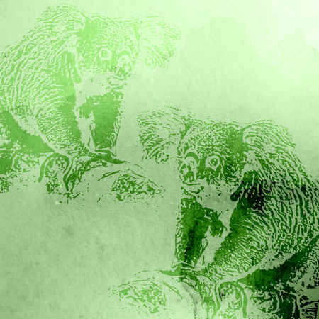 arboreal: vector vintage illustration of green watercolor koala bears on the old paper texture Illustration