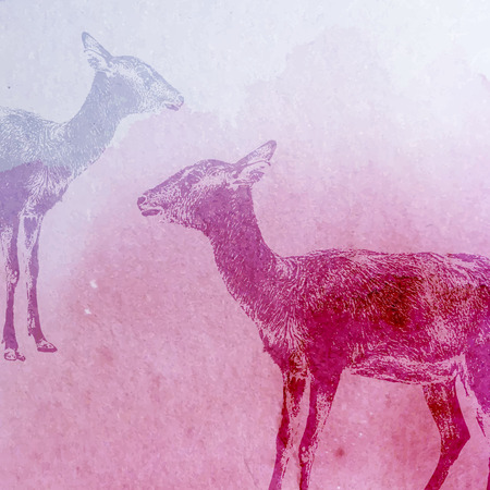 gazelle: vector vintage illustration of a watercolor goat or antelope on the old paper texture