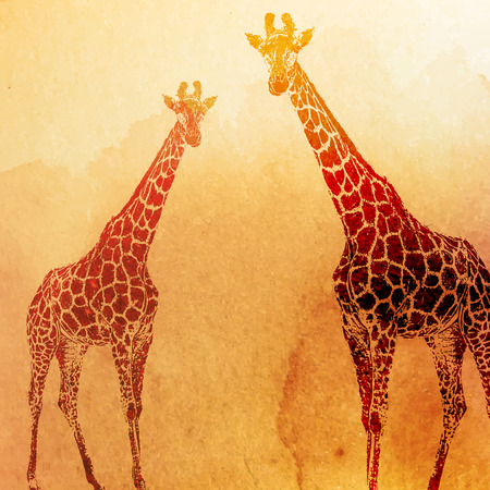 vector vintage illustration of  watercolor giraffes on the old paper texture Ilustracja
