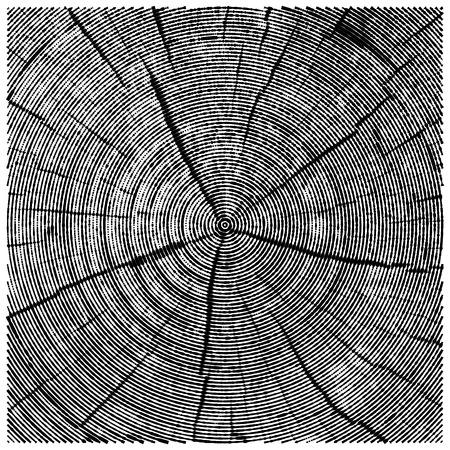 ベクトルの木の幹をカットを見たの彫刻の自然のイラスト。ウッド テクスチャの抽象的なスケッチ