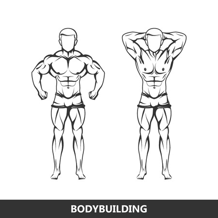 bodybuilding: Vector illustration of muscled man body silhouettes. posing athlete. fitness or bodybuilding concept