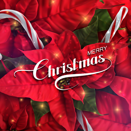 poinsettia: Merry Christmas. Vector Holiday Illustration With Lettering Label, Christmas Candy Cane, Sparkles And Poinsettia Flowers
