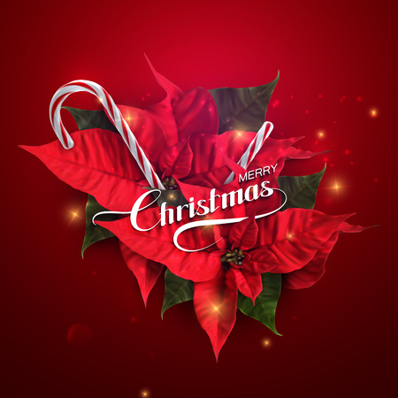 Merry Christmas. Vector Holiday Illustration With Lettering Label, Christmas Candy Cane, Sparkles And Poinsettia Flowers