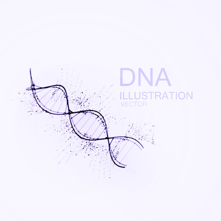 DNA chain. Vector illustration of DNA strand and particles. Artistic ink imitation vector illustration. Science or Medical concept