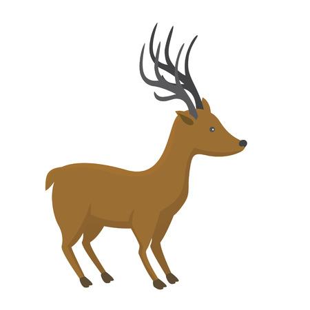 Elegant deer.  isolated animal. 向量圖像