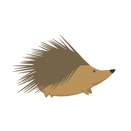 illustration of cute hedgehog isolated on transparent background.