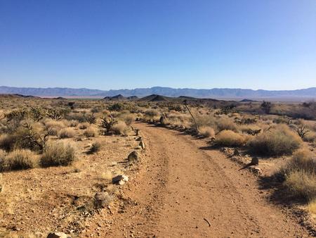 Road in the Arizona desert under the blue sky