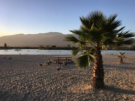 Lake in the Santa Fe Covina Park 스톡 콘텐츠