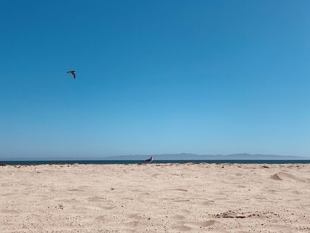 sandy beach along the pacific. Harbor - Port Marina del Rey, Santa Barbara, California. Stock Photo