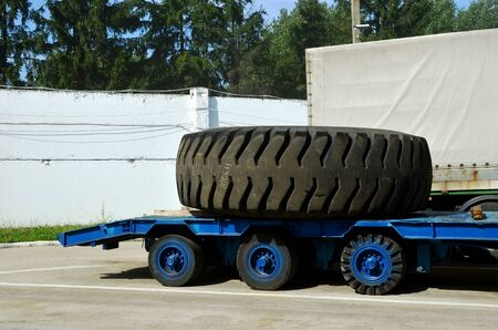 Transporting a large wheel for a mining truck on a truck trailer. The protector of a large rubber wheel. Rubber tire from the tipper  at an industrial plant for the production of cars. Stock Photo