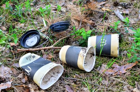 Discarded coffee cups in the forest on ground. People left behind trash. The concept of pollution of nature and the environment, background, texture Reklamní fotografie