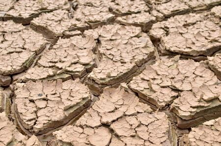 Dry lake or swamp in the process of drought and lack of rain or moisture, a global natural disaster. The cracked soil of the earth due to climate change. Hydrological drought, ccological catastrophy