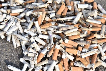 A lot of cigarette butts with some ash. Smoking as a global social problem. Nicotine addiction, anti-smoking. Cigarettes background, texture