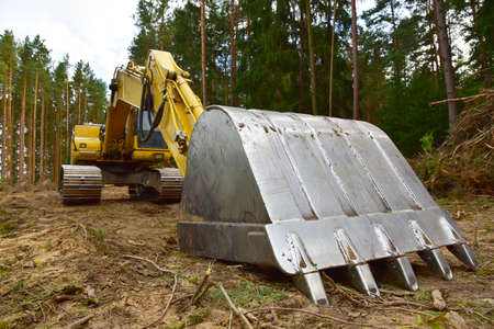 Excavator clearing forest for new development and road work. Backhoe for forestry work. Tracked heavy power machinery for forest and peat industry. Logging, road construction in forests Banque d'images