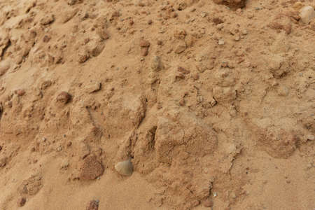 The texture of the sandy layer of the earth. Sand background