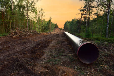 Natural Gas Pipeline Construction. Building of transit petrochemical pipe in forest area. Pipes Welding