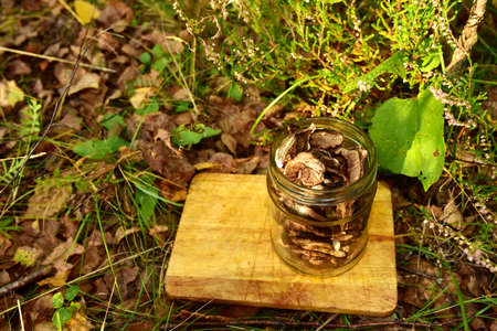 Dried Mushrooms in aglass jar on a wooden kitchen board on a background of green grass in the forest. Drying the edible brown cap boletus and white mushroom. Dry Fungus Aspen in wildlife