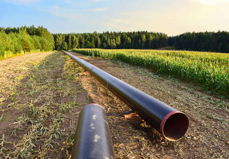 LNG pipeline construction project for global exports of natural gas. Building of transit petrochemical pipe in forest area. Carry diluted bitumen and crude to international markets. Oil and gas