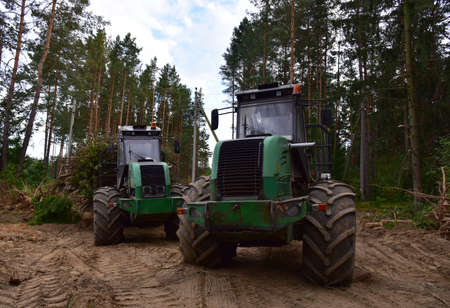 Crane forwarder machines at during clearing of a plantation. Wheeled harvester transports raw timber from the felling site out to a road for collection by a truck. Harvesters, forest Logging machines