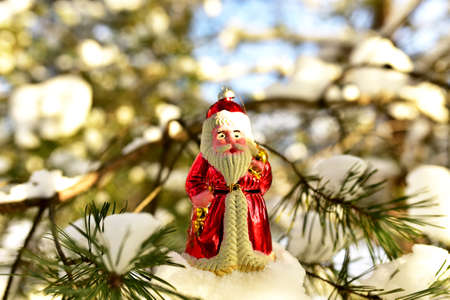 Christmas toy Santa Claus on branch with pine tree needles in the snow. Christmas balls decoration. Сoncept of preparing for the celebration of New Year and Shopping gifts