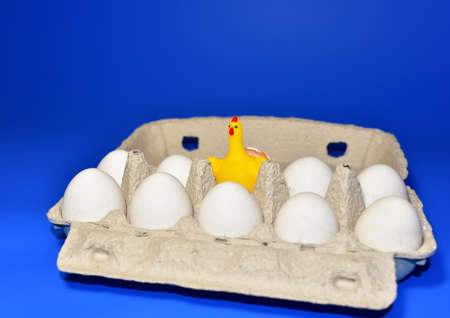 Ð¡hick in a chicken egg among whole white eggs lying in a paperboard. Eggs in egg carton.