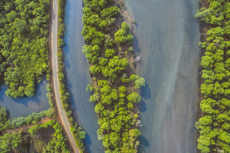 Aerial View of lowland of river and forest, India