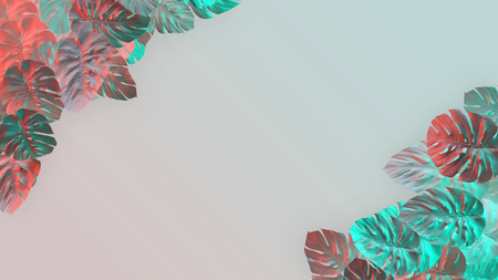 Tropical leaves Monstera on pink background. Template layout, minimal fashion summer concept art . Фото со стока