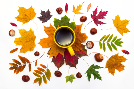 aromatic: maple leaves and chestnut near a cup of hot aromatic black coffee on a white background