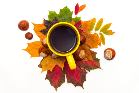 maple leaves and chestnut near a cup of hot aromatic black coffee on a white background