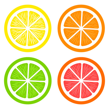 Collection of slices lemon, orange, grapefruit and lime on white background. Fruits set. Vector illustration. Colorful icons.
