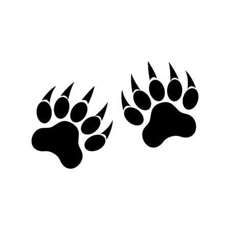 Animal paws with claws. Tiger paw. Vector illustration on white background. Vector Illustration