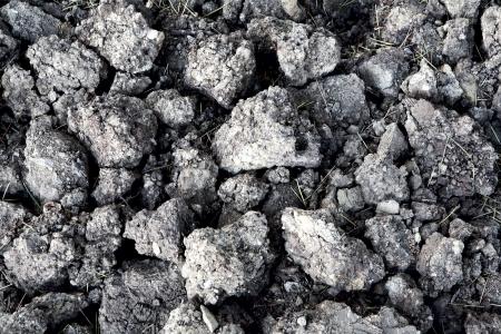 superficie de la tierra desenterr� listas para la siembra Foto de archivo