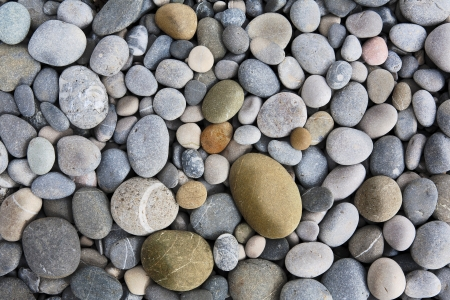 abstract background with dry round peeble stones Stock Photo