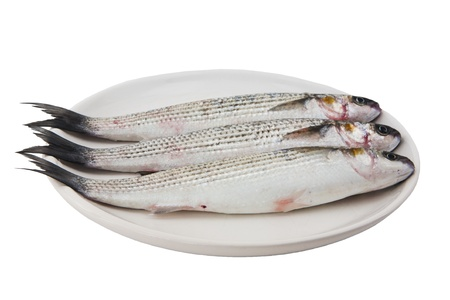 three gray mullet fish on plate isolated on white background