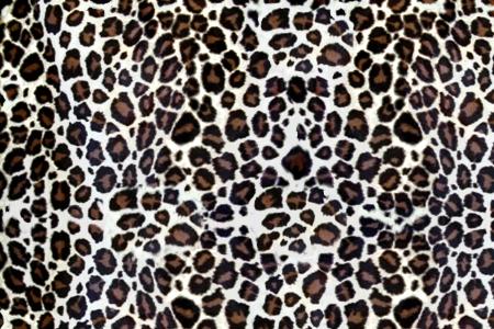 leopard skin: Animal Fur