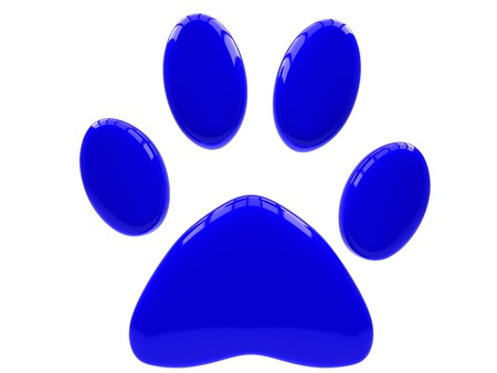 dog track: Blue paw print isolated on white background. Stock Photo