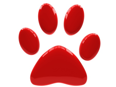 dog track: Red paw print isolated on white background. Stock Photo